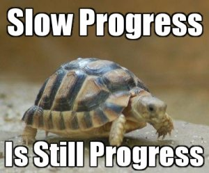 slow-progress-is-still-progress